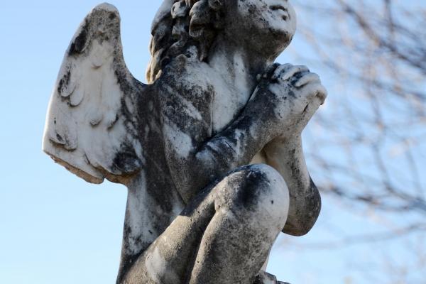 anjo-crianca-orante-a-consolacao-atraves-da-oracaoFBA3F05B-F0B3-3561-7194-5E06B9AC8115.jpg